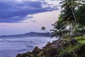 Beach Coastal Scene — Stock Photo