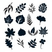 Black Leaf Symbols — Stock Vector