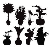 Potted plant silhouette collection — Stock Vector