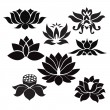 Lotus flowers  Tattoo - Illustration on white background — Stock Vector #65029711