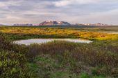 Thingvellir National Park, Iceland. — Stock Photo