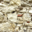 Ancient Stone Wall — Foto Stock #56832043