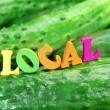 Wooden Sign Local On Fresh Home Grown Cucumbers — Stock Photo #70927099