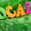 Wooden Sign Local On Fresh Home Grown Cucumbers — Stock Photo #72005611