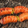 Tasty Sausages On The Hot Barbecue Charcoal Grill Close-up — Stock Photo #76014441