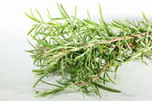 Herbage — Stock Photo
