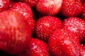 Wat aardbeien — Stockfoto