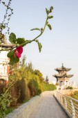 Chinese pavilion in the city park — Stock Photo