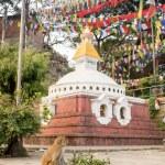 Buddhist stupa - Buddhist place of worship — Stock Photo #72598383