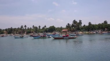 Tired fishing fleet getting back — Stock Video