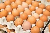 Eggs in the carton package — Stock Photo
