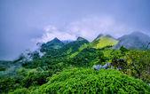 Berg med dimma — Stockfoto