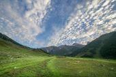 Pole a vysokohorských — Stock fotografie
