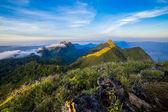 Porannego światła przez las i góra — Zdjęcie stockowe