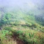 Morning Mist at Tropical Mountain Range — Stock Photo #63121299