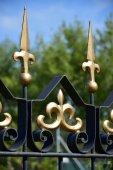 Detail of  a beautiful fence — Zdjęcie stockowe