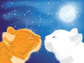 Two beloved cats on the night sky background. — Stock Vector