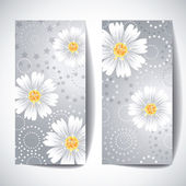 Two banners with daisy flowers on white background. — Stock Vector