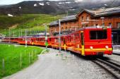 Train from Kleine Scheidegg departs to Jungfraujoch station. — Stock Photo