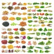 Set of vegetable grains and herbs on white background — Stock Photo #63719575