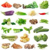 Set of vegetable isolated on white background — Stock Photo