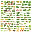 Vegetable isolated on a white background — Stock Photo #71767379