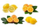 Orange fruit and lemon isolated on white background — Stock Photo