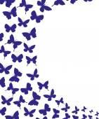 Vector banner. Butterflies. — Wektor stockowy