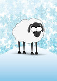 Vector winter banner. Sheep. — Stock Vector