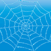 Vector background. Cobweb. — Vetor de Stock