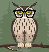 Owl on green background. — Stock Vector