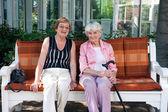 Elderly friends chatting — Stockfoto