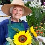 Senior Woman on Chair Holding Sunflowers — Stock Photo #68905735