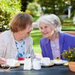 Senior Women Relaxing at Garden Table — Stock Photo #68905761
