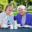 Senior Women Relaxing at Garden Table — Stock Photo #68905869
