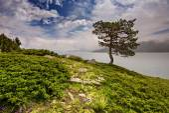 Lake view — Stock Photo