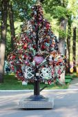 PERM, RUSSIA - JUN, 23, 2014: Tree with wedding locks in Gorky P — Stock Photo