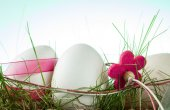 Easter eggs on a colored background — Stock Photo