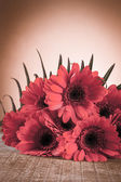 Gerbera on a wooden table — Stock Photo