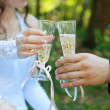 Bride and groom holding glasses with champagne. — Stock Photo #51817213