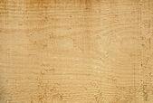 Freshly sawn wood, — Stock Photo