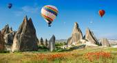 Hot air balloons flying over field — Stock Photo