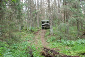 """American retro car Dodge WC-51 rides in the forest on the hard road, 3rd international meeting """"Motors of war"""" near the city Chernogolovka — Stockfoto"""