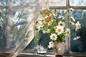 Bouquet of chamomilie flowers on the window sill — Stock Photo
