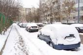 Snow covered cars in parking lot — Photo