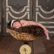 Weighing the Baby — Stock Photo #53678945
