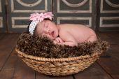 Sleeping Baby — Stock Photo