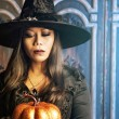 The Halloween Witch — Stock Photo