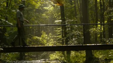 Adventurer goes over the bridge in the forest — Stockvideo