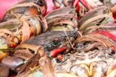 Fresh serrated mud crab black in seafood market — ストック写真